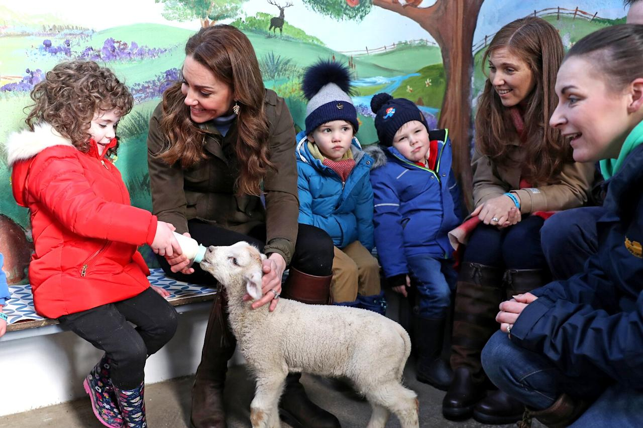 """Kate Middleton fed a lamb, pet an adorable brown alpaca, met a guinea pig and pet a tortoise alongside groups of children and families that visited<a href=""""https://www.thearkopenfarm.co.uk/"""">the Ark Open Farm</a> in Northern Ireland alongside the royal mom."""