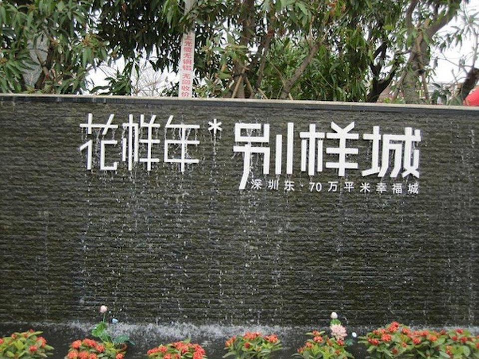 Fantasia Holdings Group, the Shenzhen-based property developer founded by Zeng Jie, the former vice-president Zeng Qinghong's niece, failed to repay US$205 million of corporate bond due on Monday. Photo: Weibo