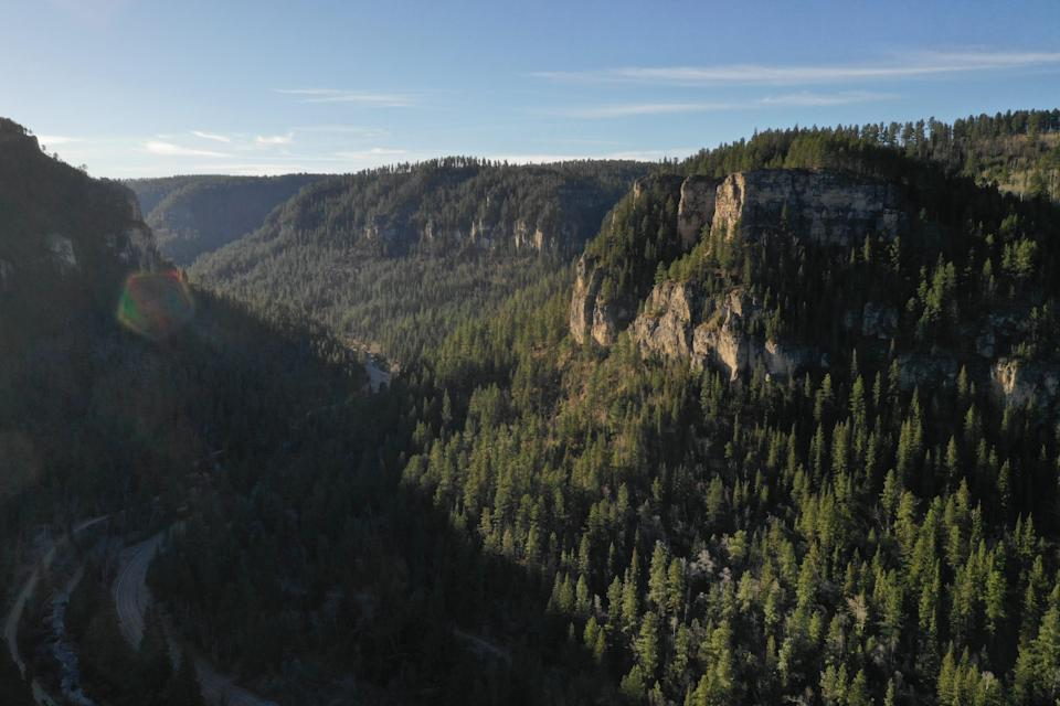 Black Hills National Forest, so named by Native Americans because the evergreen trees are so dark green, they look almost black.