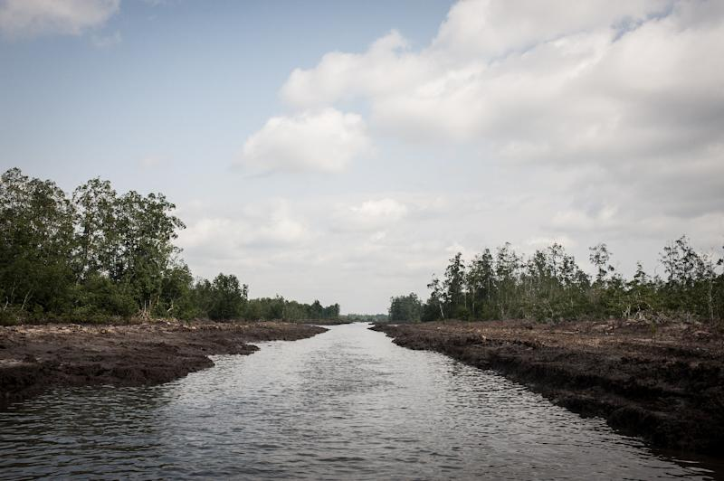 The oil rich Delta region in Nigeria has seen the rise of a new militant group that has vowed to cripple the economy, due to the actions of the Delta Avengers Nigeria's oil production has dropped to a 20-year low drastically affecting economy (AFP Photo/Stefan Heunis)