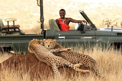 This Kenya safari holiday means days abuzz with bush walks, evening drives aboard comfortable 4x4 vehicles and nights spent under a blanket of stars