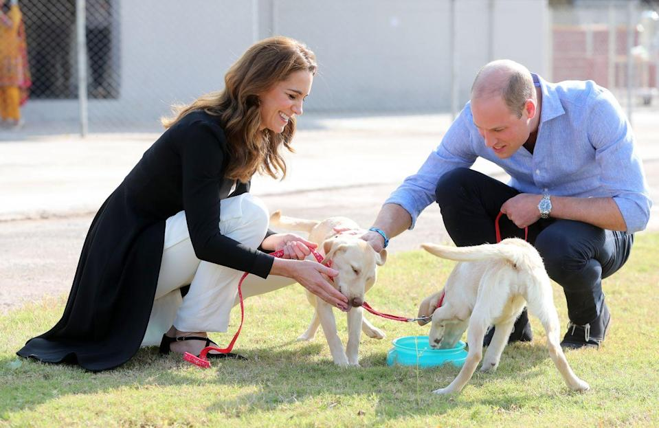 """<p>During their royal tour of Pakistan, <a href=""""https://www.townandcountrymag.com/society/tradition/g29511672/kate-middleton-prince-william-army-canine-centre-pakistan-dog-photos/"""" rel=""""nofollow noopener"""" target=""""_blank"""" data-ylk=""""slk:Kate Middleton and Prince William visited the Army Canine Centre in Islamabad"""" class=""""link rapid-noclick-resp"""">Kate Middleton and Prince William visited the Army Canine Centre in Islamabad</a>, where they had the privilege of meeting Salto and Sky.</p>"""