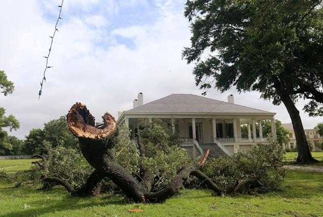 <p>A large section of an oak tree lies on the ground near the main house at Beauvoir in Biloxi, Miss., on Wednesday, June 21, 2017 after a waterspout from Tropical Storm Cindy came ashore. (Photo: John Fitzhugh/Biloxi Sun Herald/TNS via Getty Images) </p>