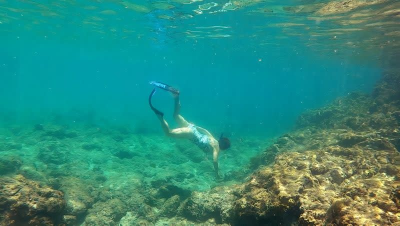 Marine scientist Deborah Brosnan does a research dive on a coral reef in Antigua and Barbuda
