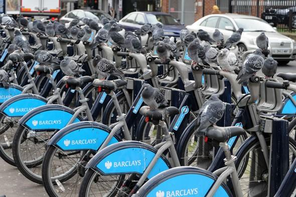 Commuters turned off Boris' bikes after they're covered with pidgeon poo