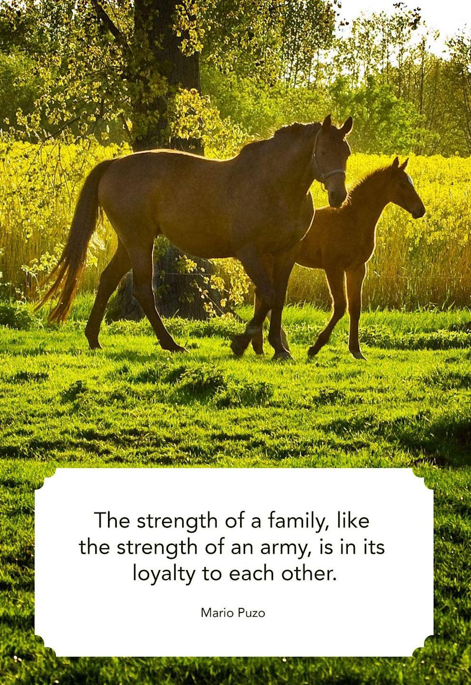 "<p>""The strength of a family, like the strength of an army, is in its loyalty to each other.""</p>"