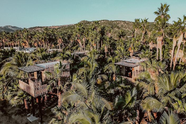 Aerial view of the treehouses at Acre Baja