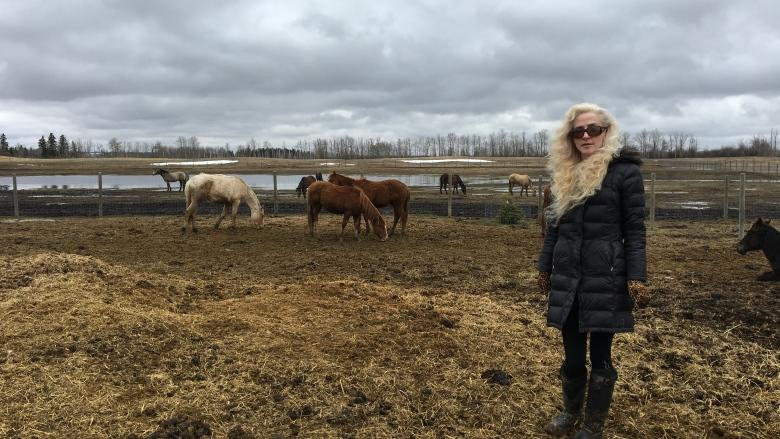 Leduc horse rescue struggling to stay above water - literally