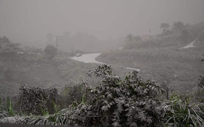 A road and vegetation covered in ash after the April 9 eruption - UWI Seismic Research Centre/AFP