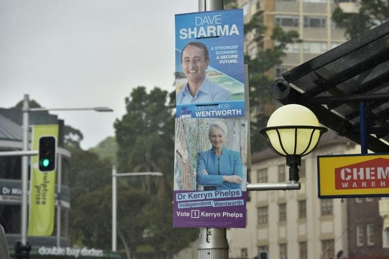 Polls were pointing to defeat for the Liberal Party's Dave Sharma at the expense of independent candidate Kerryn Phelps