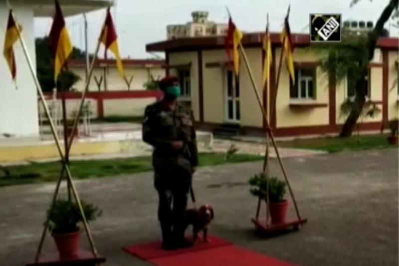 Specially-trained Sniffer Dog 'Sophia' Detects Explosive Device and Foils Blast Attempt in Chhattisgarh
