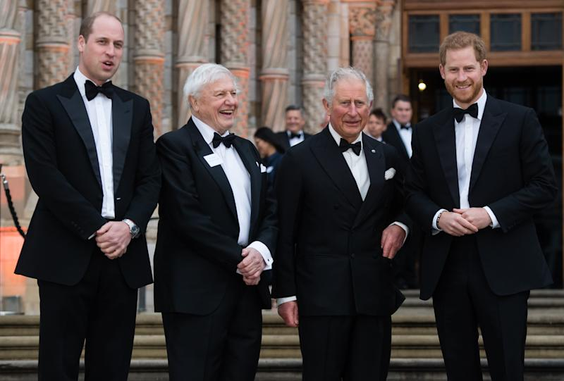 LONDON, ENGLAND - APRIL 04: Prince William, Duke of Cambridge, Sir David Attenborough, Prince Charles, Prince of Wales and Prince Harry, Duke of Sussex attend the 'Our Planet' global premiere at Natural History Museum on April 04, 2019 in London, England. (Photo by Samir Hussein/Samir Hussein/WireImage)