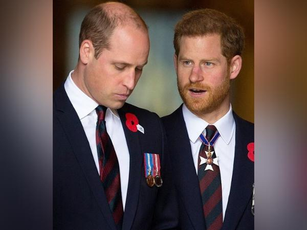 Prince William, Prince Harry (Image Source: Instagram)