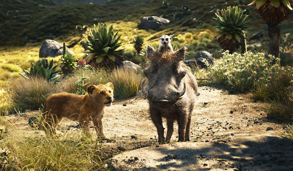 Simba (JD McCrary) meets new pals Timon (Billy Eichner) and Puumba (Seth Rogen) in 'The Lion King' (Photo: Walt Disney Studios Motion Pictures / courtesy Everett Collection)