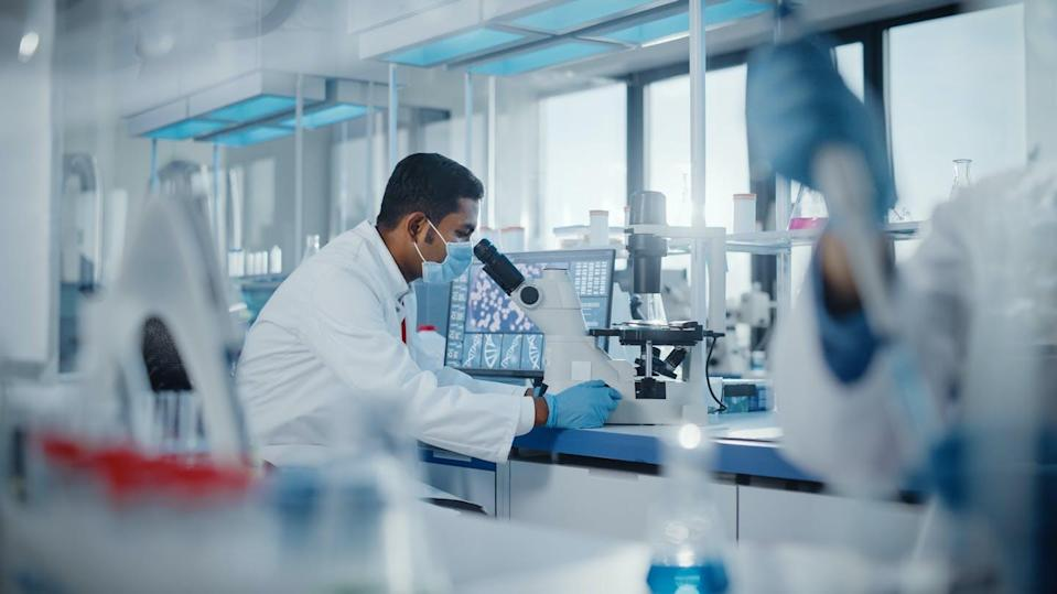 """<span class=""""attribution""""><a class=""""link rapid-noclick-resp"""" href=""""https://www.shutterstock.com/es/image-photo/medical-research-laboratory-male-scientist-looking-1924512527"""" rel=""""nofollow noopener"""" target=""""_blank"""" data-ylk=""""slk:Shutterstock / Gorodenkoff"""">Shutterstock / Gorodenkoff</a></span>"""
