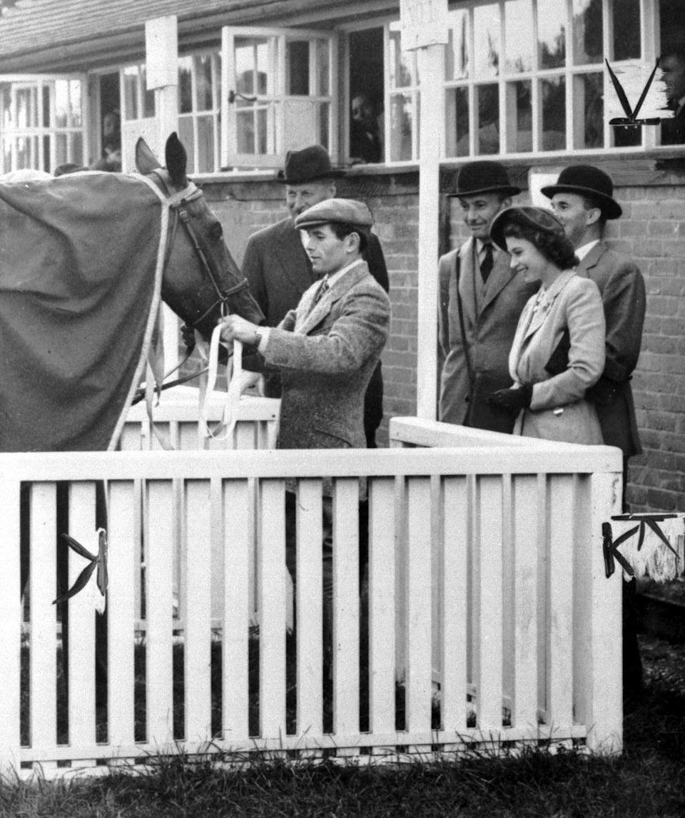 Princess Elizabeth inspects Monaveen after the victory at Fontwell Park in 1949 (PA) (PA Archive)
