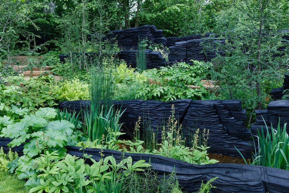 "<p><strong>Category: </strong>Show Garden</p><p><strong>Awarded: Gold / Best Show Garden</strong></p><p>This woodland landscape with stone platforms and huge burnt timber sculptures representing natural rock formations, is inspired by nature's power to regenerate.</p><p><a class=""body-btn-link"" href=""https://www.housebeautiful.com/uk/garden/a27537550/chelsea-flower-show-2019-best-garden-winners/"" target=""_blank"">READ MORE</a></p>"