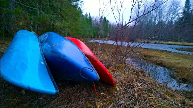 Paddle your way to remote N.B. wilderness areas while rivers run high