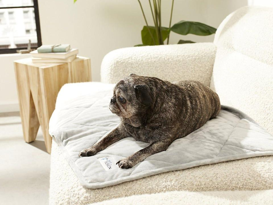 PetFusion Microplush Quilted X Large Blanket