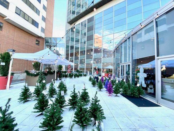 PHOTO: Patients at Children's of Alabama got to pick their own Christmas tree in a winter wonderland of more than 300 Christmas trees. (Mike Strawn/Children's of Alabama )