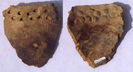 Bits of the oldest known pottery, some 2,000 years older than previously found pieces, have been uncovered in China