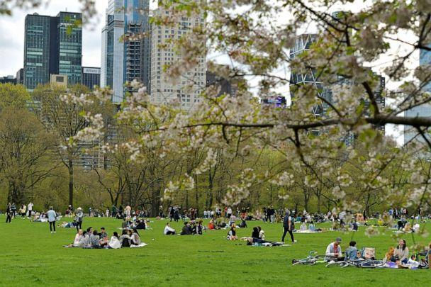 PHOTO: New Yorkers enjoy a spring day in Sheep's Meadow in Central Park, April 18, 2021, in New York City. (Andrew H Walker/Shutterstock)