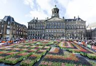 """<p>The rows of tulips in the garden prepared for the tulip day at Royal Palace of Amsterdam</p><p><a class=""""link rapid-noclick-resp"""" href=""""https://www.primaholidays.co.uk/tours/netherlands-holland-tulips-cruise-adam-frost"""" rel=""""nofollow noopener"""" target=""""_blank"""" data-ylk=""""slk:VISIT AMSTERDAM IN SPRING WITH PRIMA"""">VISIT AMSTERDAM IN SPRING WITH PRIMA</a></p><p><strong><a href=""""https://hearst.emsecure.net/optiext/optiextension.dll?ID=iJB5XQ9hbysIihBPVSR1SDFHDwOevp5cB7mtotiL0TWlZ15eC%2BWQWXYp3HVN6xoPbvNGcYnocErOiJ"""" rel=""""nofollow noopener"""" target=""""_blank"""" data-ylk=""""slk:Sign up"""" class=""""link rapid-noclick-resp"""">Sign up</a> for inspirational travel stories and to hear about our favourite financially protected escapes and bucket list adventures.</strong></p><p><a class=""""link rapid-noclick-resp"""" href=""""https://hearst.emsecure.net/optiext/optiextension.dll?ID=iJB5XQ9hbysIihBPVSR1SDFHDwOevp5cB7mtotiL0TWlZ15eC%2BWQWXYp3HVN6xoPbvNGcYnocErOiJ"""" rel=""""nofollow noopener"""" target=""""_blank"""" data-ylk=""""slk:SIGN UP"""">SIGN UP</a></p>"""