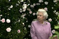 <p>The Queen looks at one of the show gardens at the Chelsea Flower Show. (PA) </p>