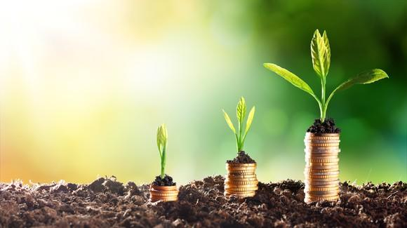 Progressively higher stacks of coins with small plants on top of them in soil.