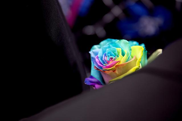 <p>A rainbow-colored rose decorates the lapel of a mourner following the funeral service for Christopher Andrew Leinonen, one of the victims of the Pulse nightclub mass shooting, outside the Cathedral Church of St. Luke Saturday, June 18, 2016, in Orlando, Fla.. (AP Photo/David Goldman) </p>