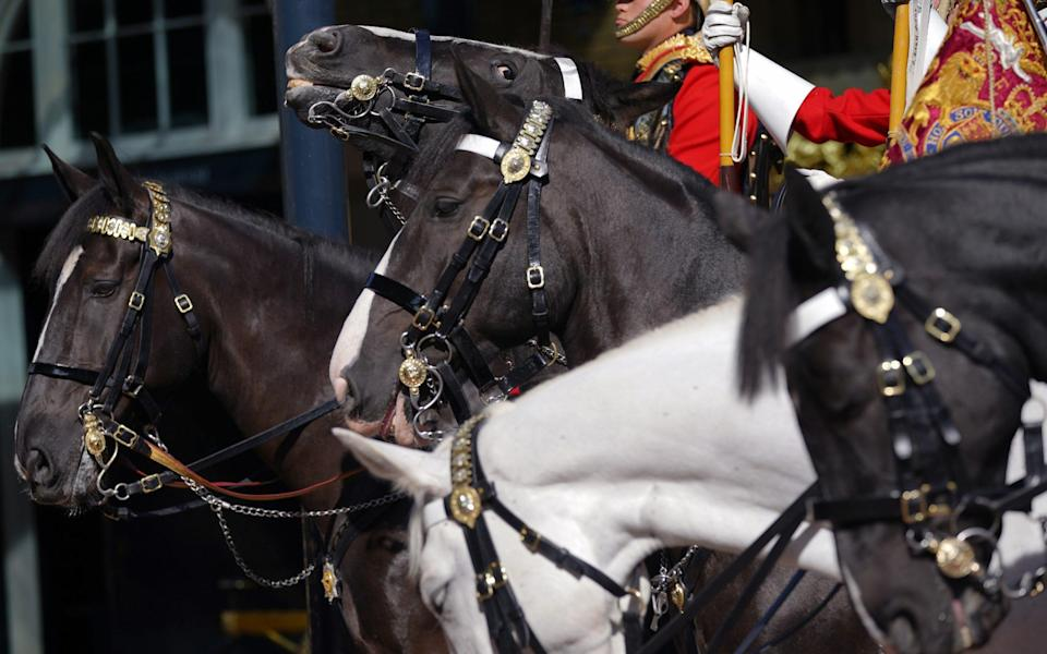 Members of the Household Cavalry in the courtyard of the Royal Mews - Yui Mok/PA Wire
