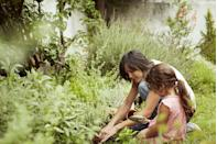 """<p>Whether you get into <a href=""""https://www.redbookmag.com/home/decor/how-to/g237/plant-vegetable-garden/"""" rel=""""nofollow noopener"""" target=""""_blank"""" data-ylk=""""slk:gardening"""" class=""""link rapid-noclick-resp"""">gardening</a> or keep a tiny succulent on the windowsill, taking care of plants requires the power of patience. """"With great power comes great responsibility,"""" but you can draw up a plan with your child that allows you to work together to properly care for your plants. Even if you don't grow the next Groot, it's a great opportunity for personal development.</p>"""