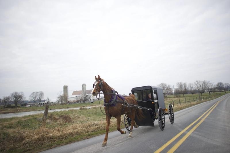 An Amish horse and buggy travels on a road in Bart Township