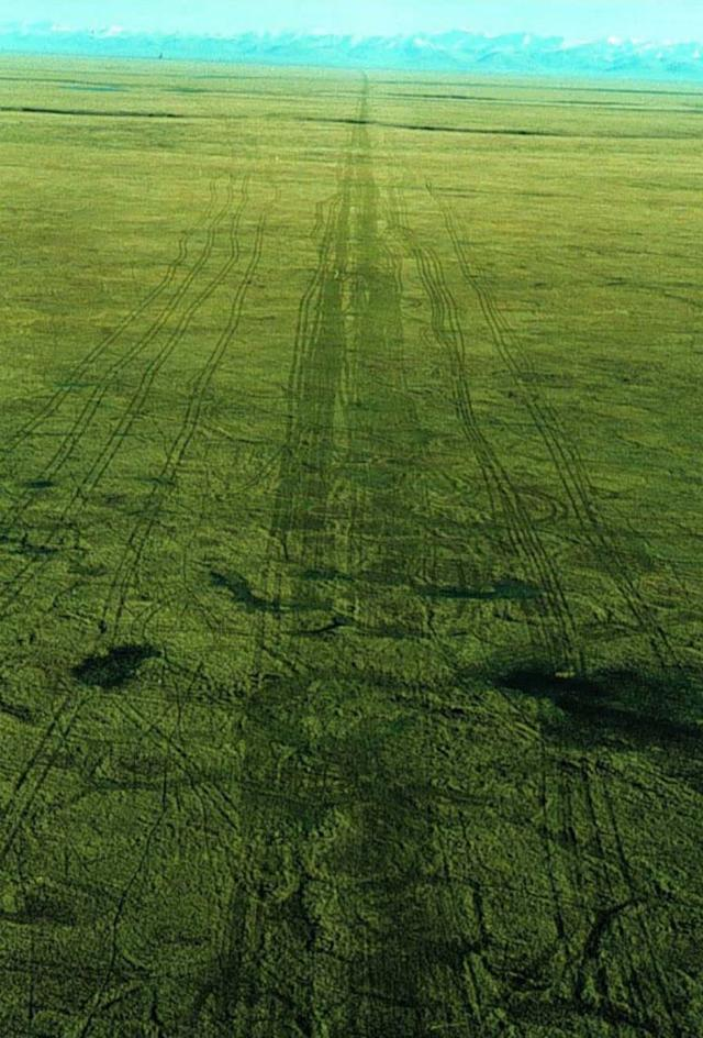 An aerial photograph of seismic lines made in ANWR in the winter of 1985 and photographed in the summer of 1985.