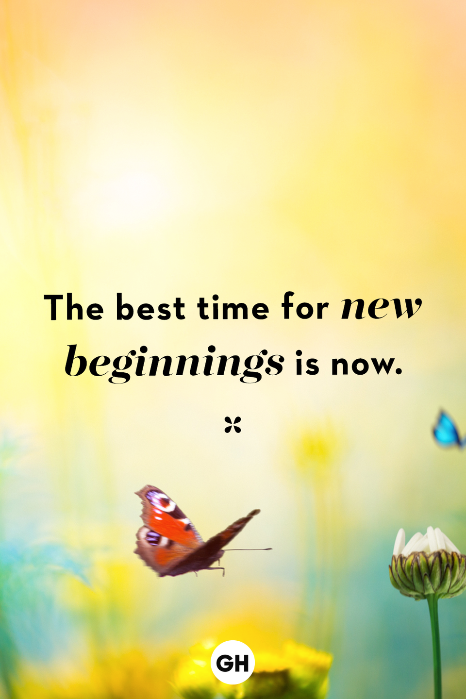 <p>The best time for new beginnings is now.</p>