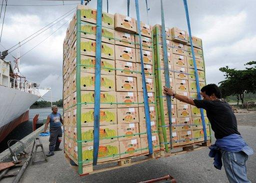 Boxes of freshly harvested Philippine bananas destined for China and South Korea are loaded in a cargo vessel