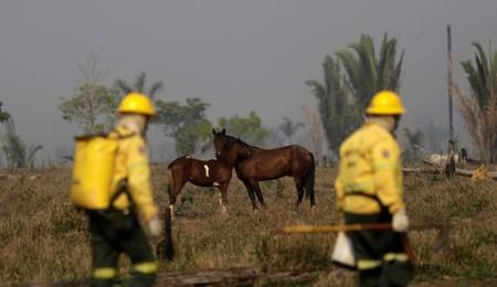 Firefighters walk on a farm as they search a burning tract of the Amazon forest as it is cleared by farmers, in Rio Pardo