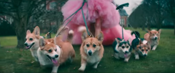 Danielle Jonas walks corgis fit for a Queen through the British stately home in the video [Photo: YouTube]