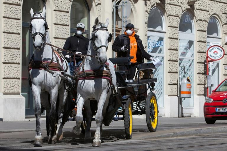 """The """"Fiaker"""" or horse-drawn carriage is a popular tourist attraction in Vienna"""