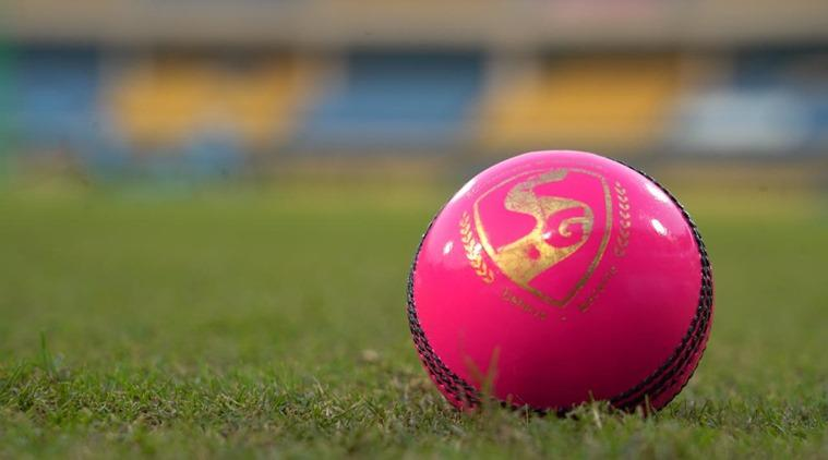 pink ball test, eden garden stadium, pink ball, Day and Night Test, Kolkata test, pink ball cricket, indian express, sports news, cricket news