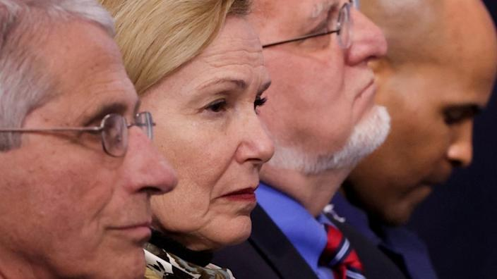 Dr Birx (second L) pictured with other task force members at a White House briefing in April