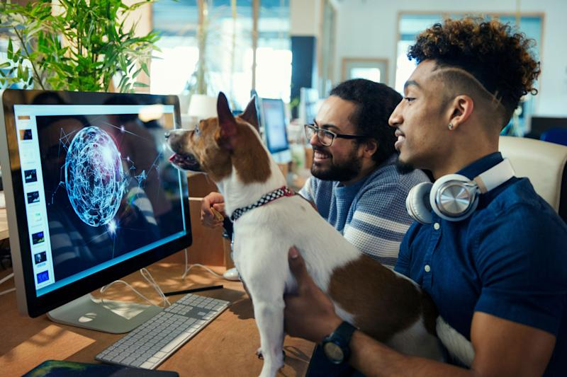 Graphic designers with dog working at computer in office