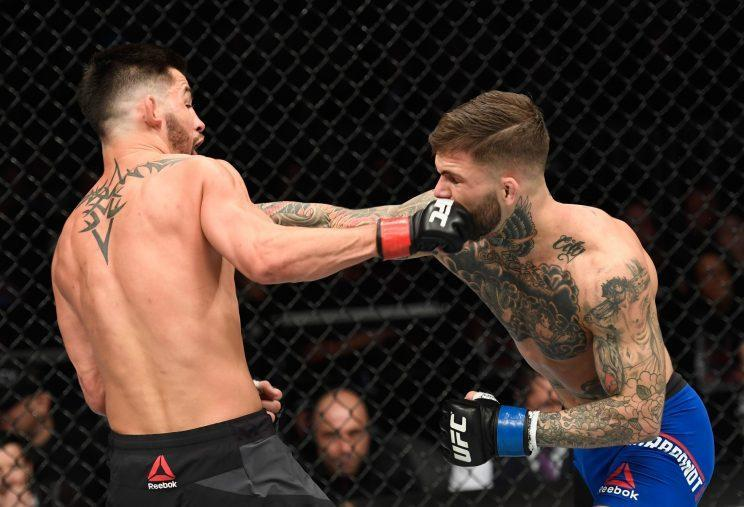 Dominick Cruz (L) and Cody Garbrandt land punches on each other during their UFC 207 bout. (Getty)