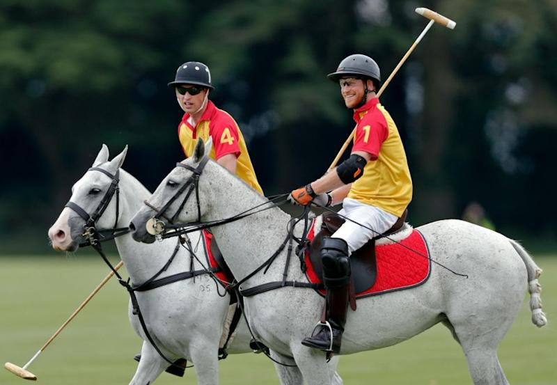 Prince William Harry polo charity