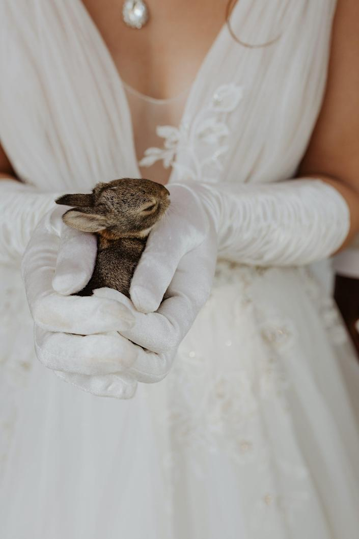 A bride holds a baby bunny with gloved hands.