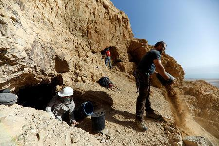Volunteers and archaeologists work at an archaeological dig near caves in the Qumran area in the Israeli-occupied West Bank January 15, 2019. Picture taken January 15, 2019. REUTERS/Ronen Zvulun