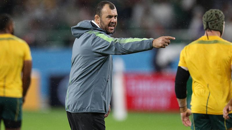 Michael Cheika, pictured here at the Rugby World Cup.