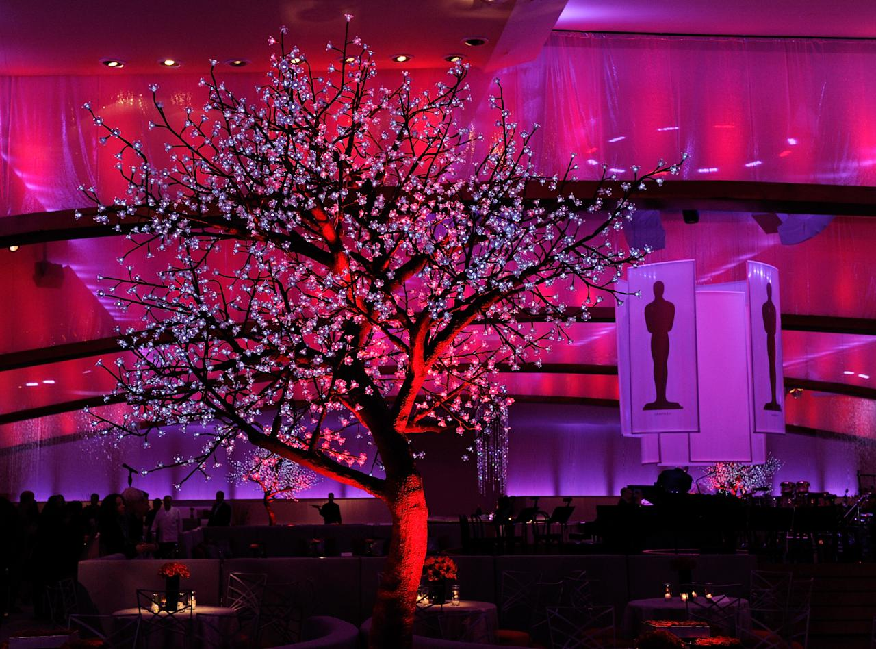 HOLLYWOOD, CA - FEBRUARY 25:  A general view shows a tree with lights at a preview of the 84th annual Academy Awards Governors Ball at the Hollywood & Highland Center on February 25, 2012 in Hollywood, California.  (Photo by Ethan Miller/Getty Images)