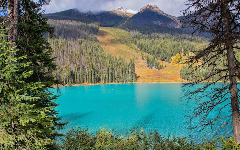 Beautiful scenes of Emerald Lake near Fernie, British Columbia