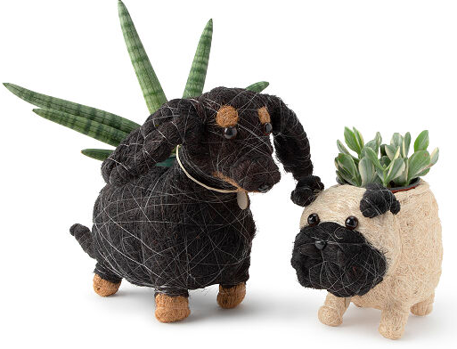 Coconut fibre dog planter, from S$82.96. PHOTO: Uncommon Goods